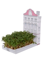 City Townhouse Mini Garden Kit