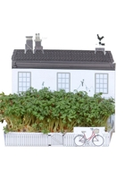 Store Village Mini Garden Kit