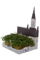 Church Village Mini Garden Kit