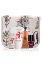 Pomegranate Great Escapes Gift Pack
