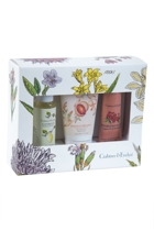 Botanicals Little Luxury Gift Pack