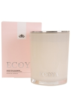 Ecoy madi05  sweetpea3 small2