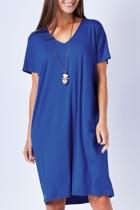 Birdk 361  blue 002 small2