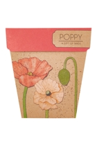 Sow poppy  pink5 small2