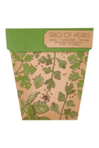 Sow trio herbs  green5 small2